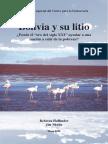 DemocracySpanishLitio.pdf