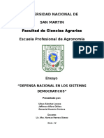 Ensayo Defensa Nacional