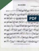 Allegro de Fiocco Viola