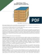 Dimensiones y Niveles Del Texto. Van Dijk- Distancia