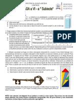 Subiecte 6 OLF 2014
