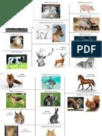 200074001-visu-mamiferos.pdf