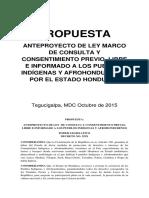 Anteproyecto Ley de CPLI  (Version Dinafroh)