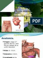 Apendicitis hgz53.pptx