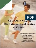 Afiche Caminata 28-02-15