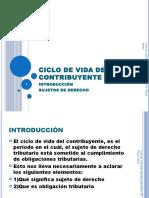 Ciclo de Vida Del Contribuyente (c 1)