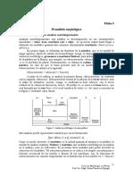 Ficha 3 morfología y sintáxis