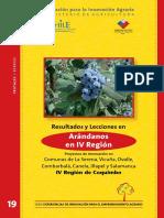 19 Libro ArandanosIV