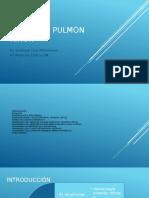 Síndrome Pulmón Riñón en UCI