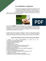 Artículo - Técnicas Mindfulness y Relajación