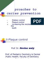 Dr. Nevine
