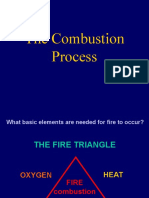 The Combustion_10.ppt