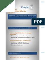 Organizational Behavior Chapter 1 Slides