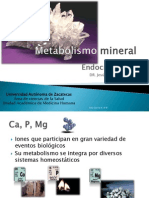 Metabolismo Mineral
