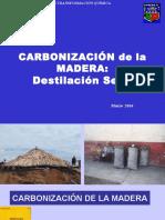 PTQ 04 Carbonización 2016 I