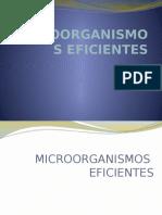 MICROORGANISMOS EFICIENTES