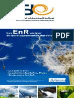guideer2012.pdf