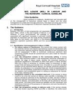 MeconiumStainedLiquorInLabourAndManagementOfTheNewbornClinicalGuidelineForTheManagementOf.pdf