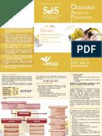 Triptico_Obesidad imprimir.pdf