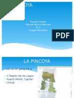 La Pincoya 4