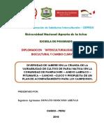 Donato Moscoso - Monografia Saberes Andinos Cultivo de Papas Nativas