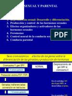 TEMA 12 Sexualidad_l-2.pdf