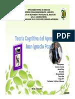 Teoria Cognitiva.pdf