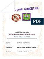 02 TINCION SIMPLE (PRESENTAR).docx
