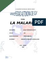 LA MALARIA.docx