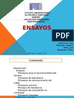 Ensayo s