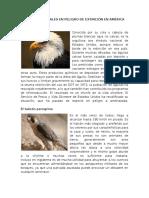 ESPECIES ANIMALES EN PELIGRO DE EXTINCIÓN EN AMÉRICA.docx