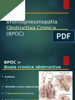 FMAM2bis_ BPOC