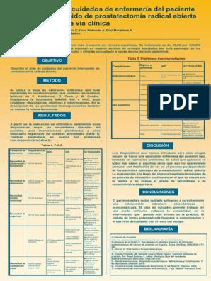 cuidados de enfermeria en pacientes con cancer de prostata pdf