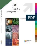 Casos Clinicos en Imagenes CTO - UROLOGIA