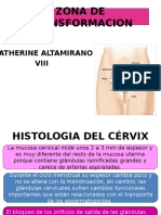 histologiadelcervix-130828114929-phpapp01 (1).pptx