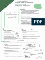 Field Guide to Tree Identification