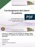 Carcinogénesis Del Cancer de Pulmón