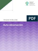 2_Auto_observacion.pdf