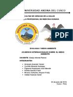 Acuerdos Internacionales Sobre El Medio Ambiente