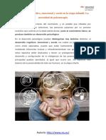 Desarrollo Cognitivo Emocional y Social en La Etapa Infantil