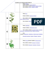 Abecedario de Plantas Medicinales