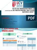 Proyecto de Inversion Para La Empresa de (1)