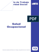 13 Salud Ocupacional.pdf
