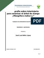 TESIS MANGO.pdf