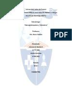 Final-Hemoglobinopatías y Talasemias(1)
