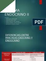Sistema Endocrino II