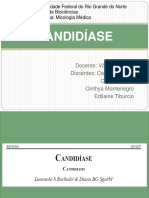 221992909-Candidiase.pdf