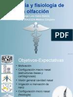 Anato y fisio olfacion.ppt
