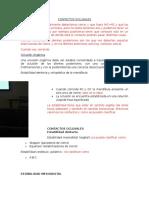 Contactos Oclusales Completo