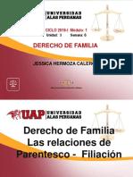 Filiacion Extramatrimonial Familia 6